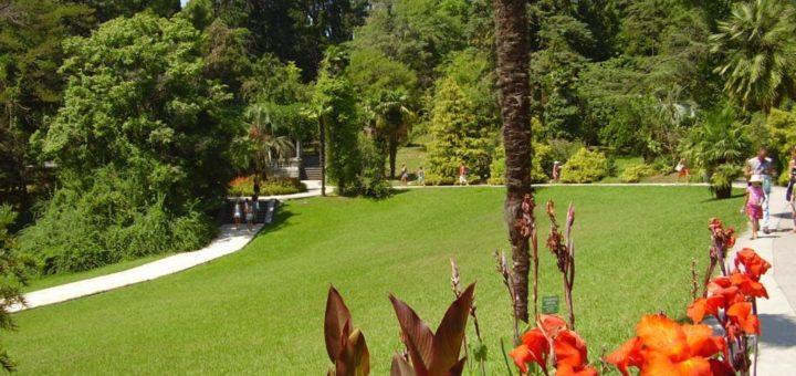 Парк «Дендрарий» - любимое место!